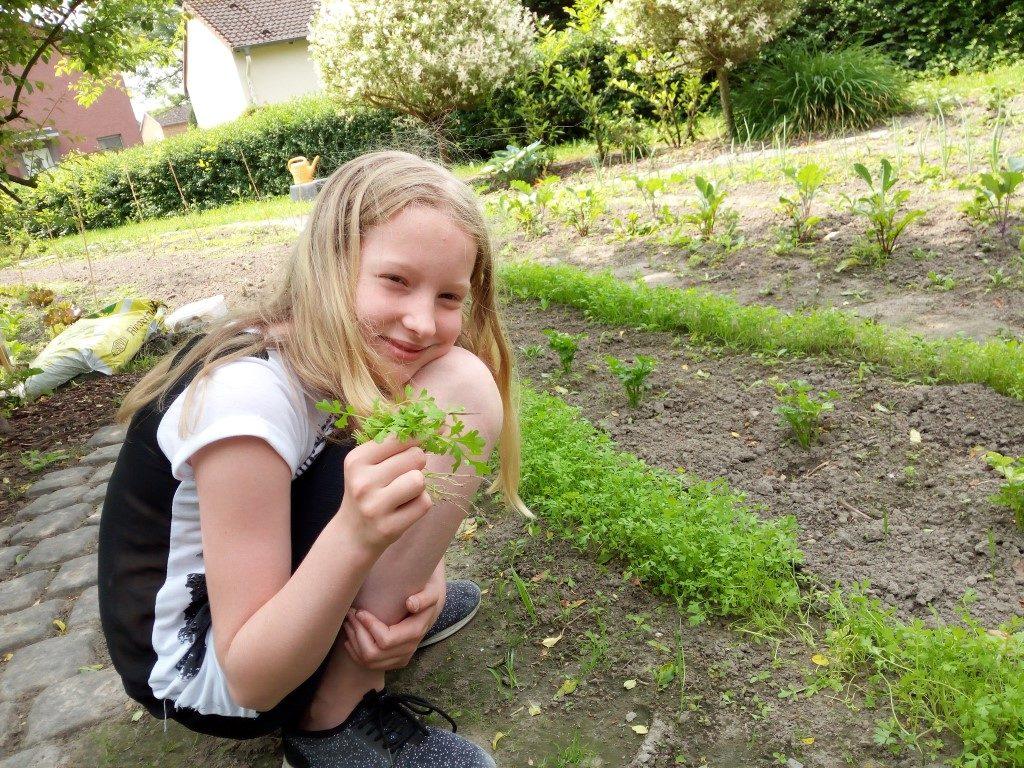2. Pflanztag im Gemüsegarten - Paul-Dohrmann-Schule Dortmund